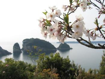 中の島(2).JPG